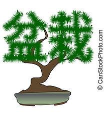bonsai drzewo, japończyk, kształt, hieroglyphs