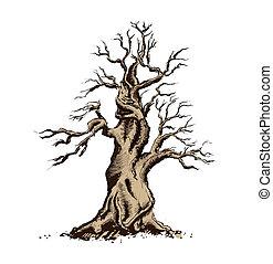 bonsai, sztuka, illustration., drzewo, wektor, sylwetka