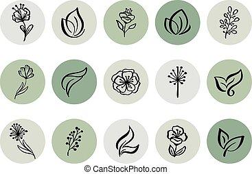 botaniczny, zielony, highlight, logo, kwiatowy, fotograf, pociągnięty, natural., szablon, historia, blogger, icon., ręka, herb., logo., studio., osłona, yoga, styl, monoline, ilustracje, fason
