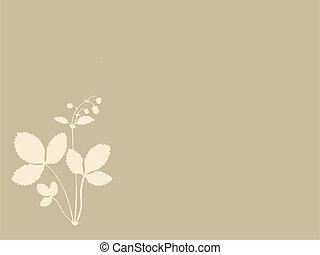 brązowy, sylwetka, ilustracja, tło, wektor, truskawki
