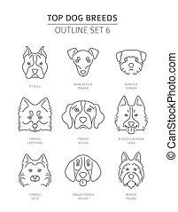 breeds., szkic, pieszczoch, collection., górny pies, ilustracja, wektor