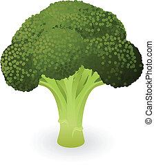 brokuł, ilustracja