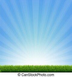 brzeg, błękitna zieleń, sunburst, trawa