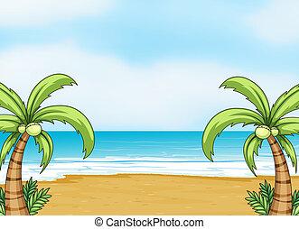 brzeg, morze
