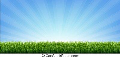 brzeg, zielone tło, chorągiew, sunburst, trawa
