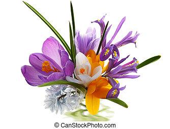 bukiet, kwiat