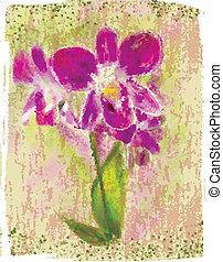bukiet, orchidee