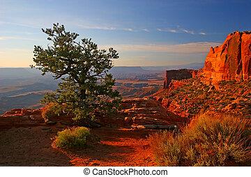 canyonlands, wschód słońca