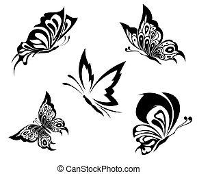 capstrzyk, motyle, czarnoskóry, biały