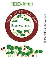 center., roślina, kiełkowanie, element, pakowanie, posiew, buckwheat., nasienie, projektować, okrągły, microgreens
