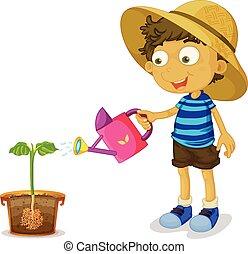 chłopiec, roślina, łzawienie, białe tło