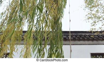 chińczyk, ogród, wejście