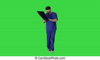 chirurg, zielony, mri, chodząc, ekran, badając, key., mózg mają rytm, chroma