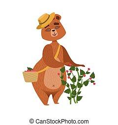 chodząc, brązowy, zbieranie, girly, słoma, wiklina, litera, niedźwiedź, malinki, krzak, ilustracja, kosz, kapelusz, rysunek