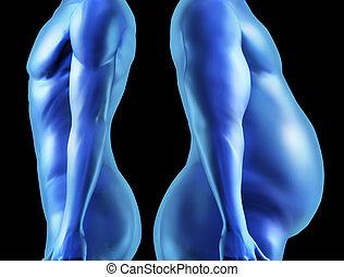 ciało, porównanie, formułować, ludzki