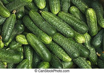 cielna, świeży, zielony, ogórki, stos