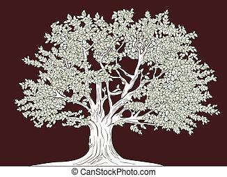 cielna, graficzny, wektor, drzewo, rysunek