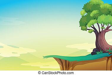 cielna, stare drzewo, urwisko