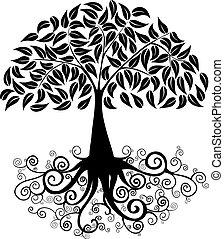 cielna, sylwetka, drzewo
