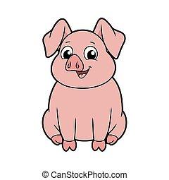 cielna, uśmiechanie się, świnia