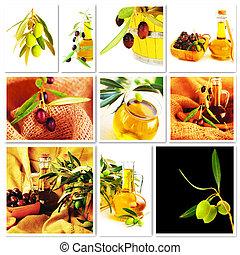 collage, oliwki