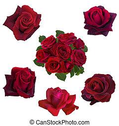 collage, róże, czerwony