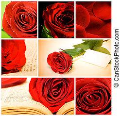 collage, róże, różny, czerwony