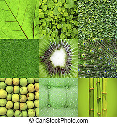 collage, zielony
