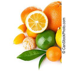 cytrus, zielony, owoc, liść, świeży