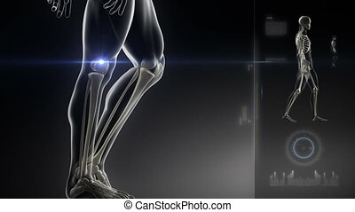 człowiek, kolano, skandować, pieszy