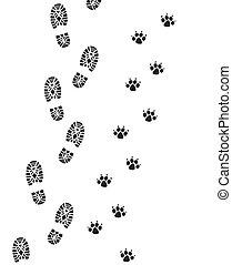 człowiek, stopa, pies, odciski