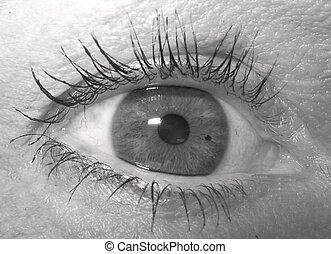 czarnoskóry, biały, oko