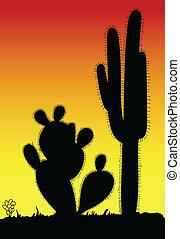 czarnoskóry, kaktus, sylwetka, kolczasty