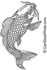 czarnoskóry, koi, fish., karp, szkic, biały