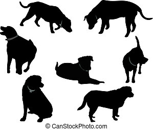 czarnoskóry, silhouettes.., labrador
