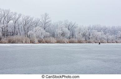 czas, lake., las, zima