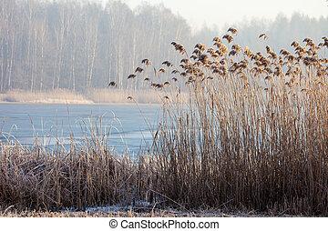 czas, pogoria., jezioro, zima krajobraz, polska