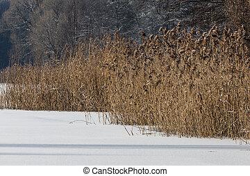 czas, polska, krajobraz, zima