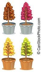 cztery, rośliny, garnki