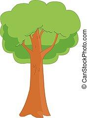 dąb, wektor, drzewo