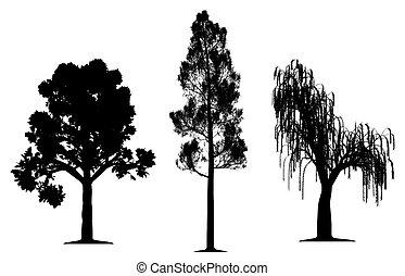 dąb, wierzbowe drzewo, sosna las, płaczący