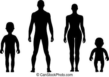 długość, przód, pełny, ludzki, sylwetka