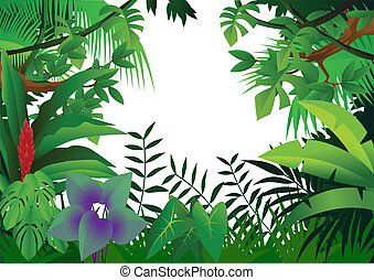 dżungla, tło