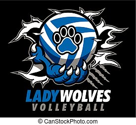 dama, wolves, siatkówka