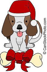 dar, kość, ilustracja, pies