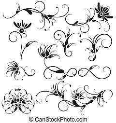 dekoracyjny, kwiatowe elementy, projektować