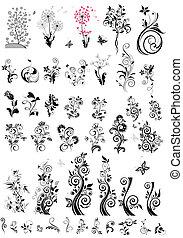dekoracyjny, kwiatowe elementy, projektować, (