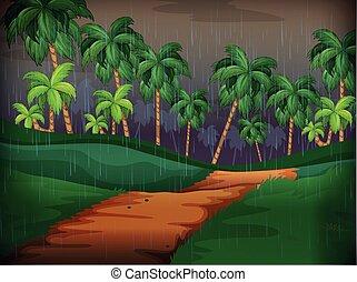 deszczowy, scena, las, dzień