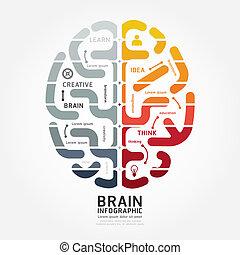 diagram, barwa, mózg, wektor, infographics, projektować, kreska, monochromia