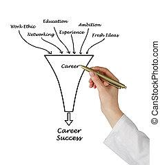 diagram, kariera, powodzenie